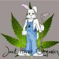 Jack Harer