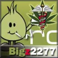 Bigz2277