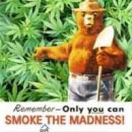 smokey de bear