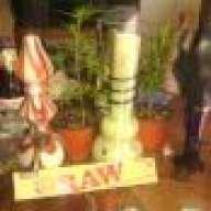 GROWUROWN420