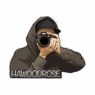 Hawoodrose