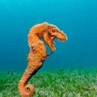Los Reefersaurus