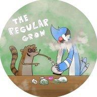 The_regular_grow