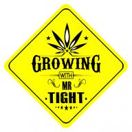 Mr.Tight